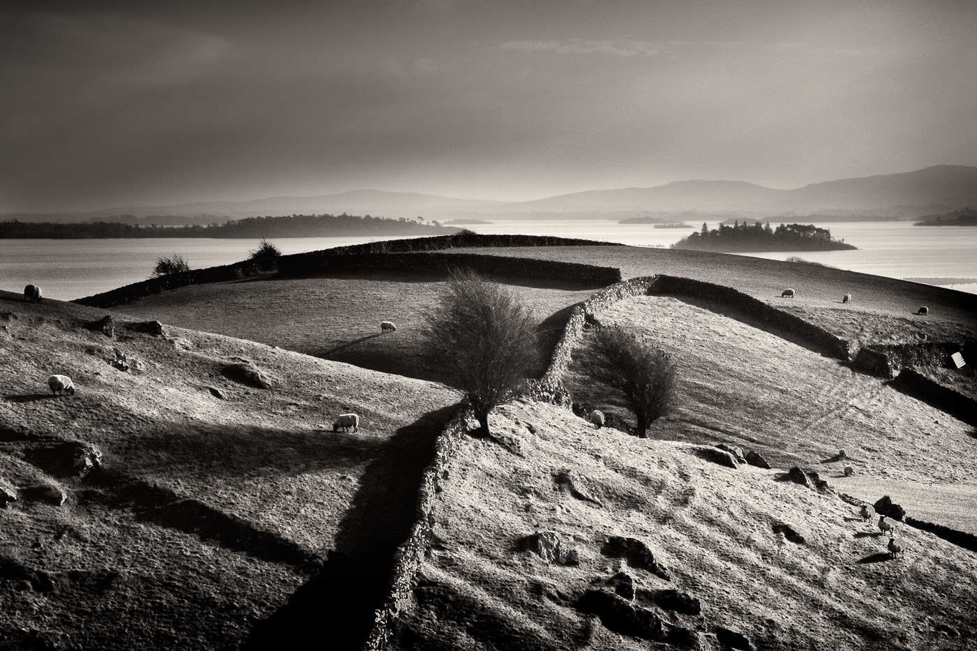 irish landscape black and white