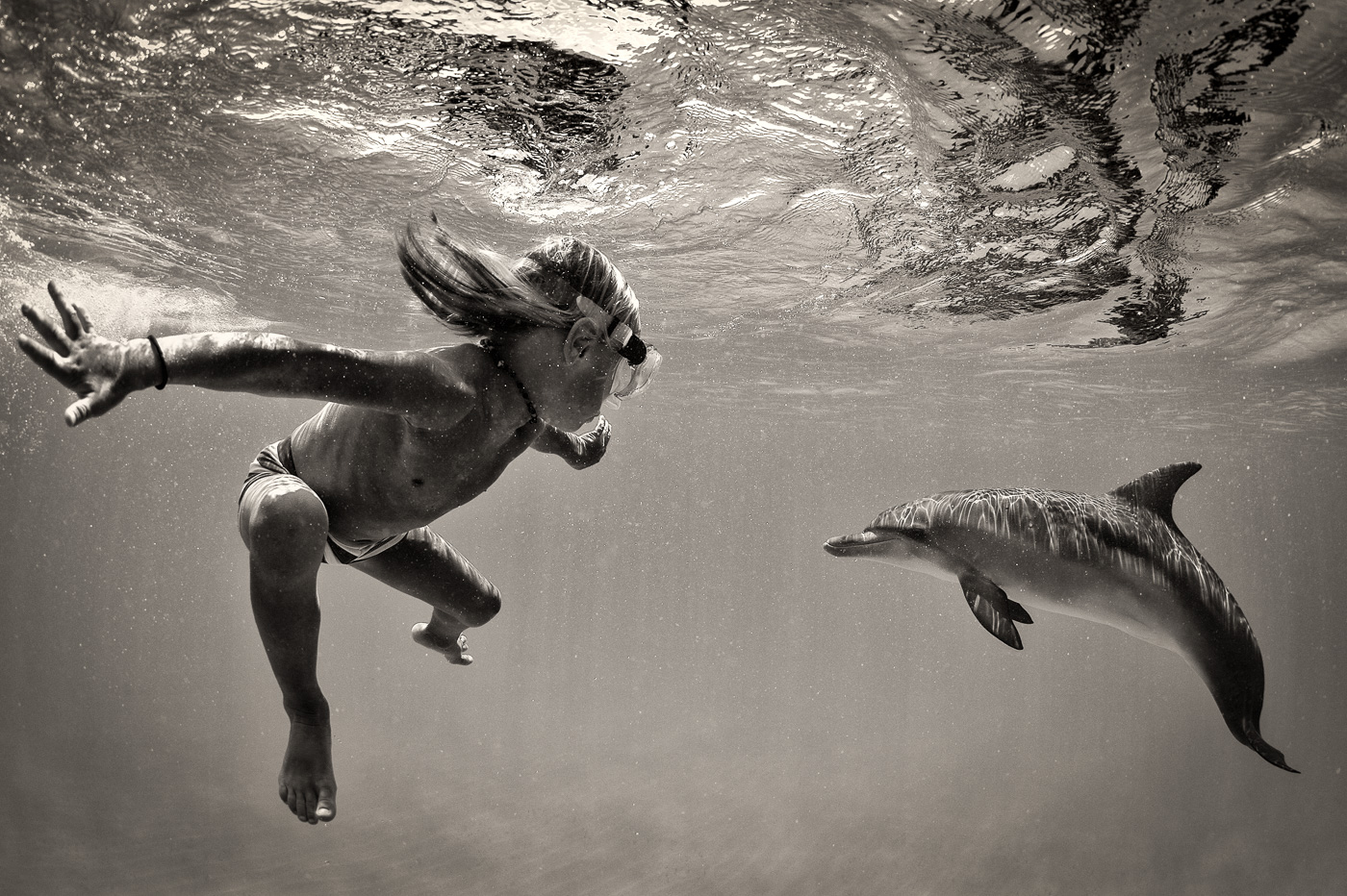 small kid dive with wild dolphins