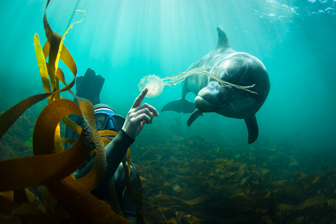 underwater magic moment