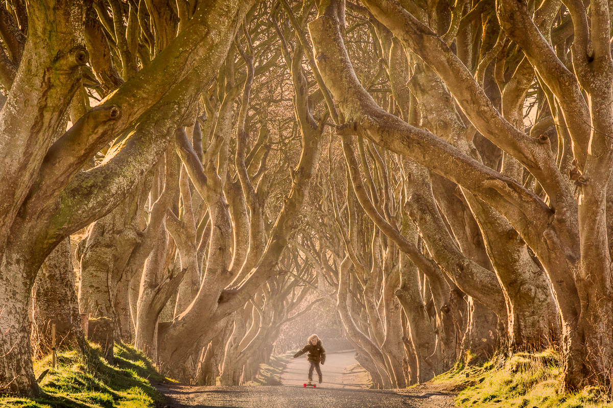 King's Road, Game of Thrones