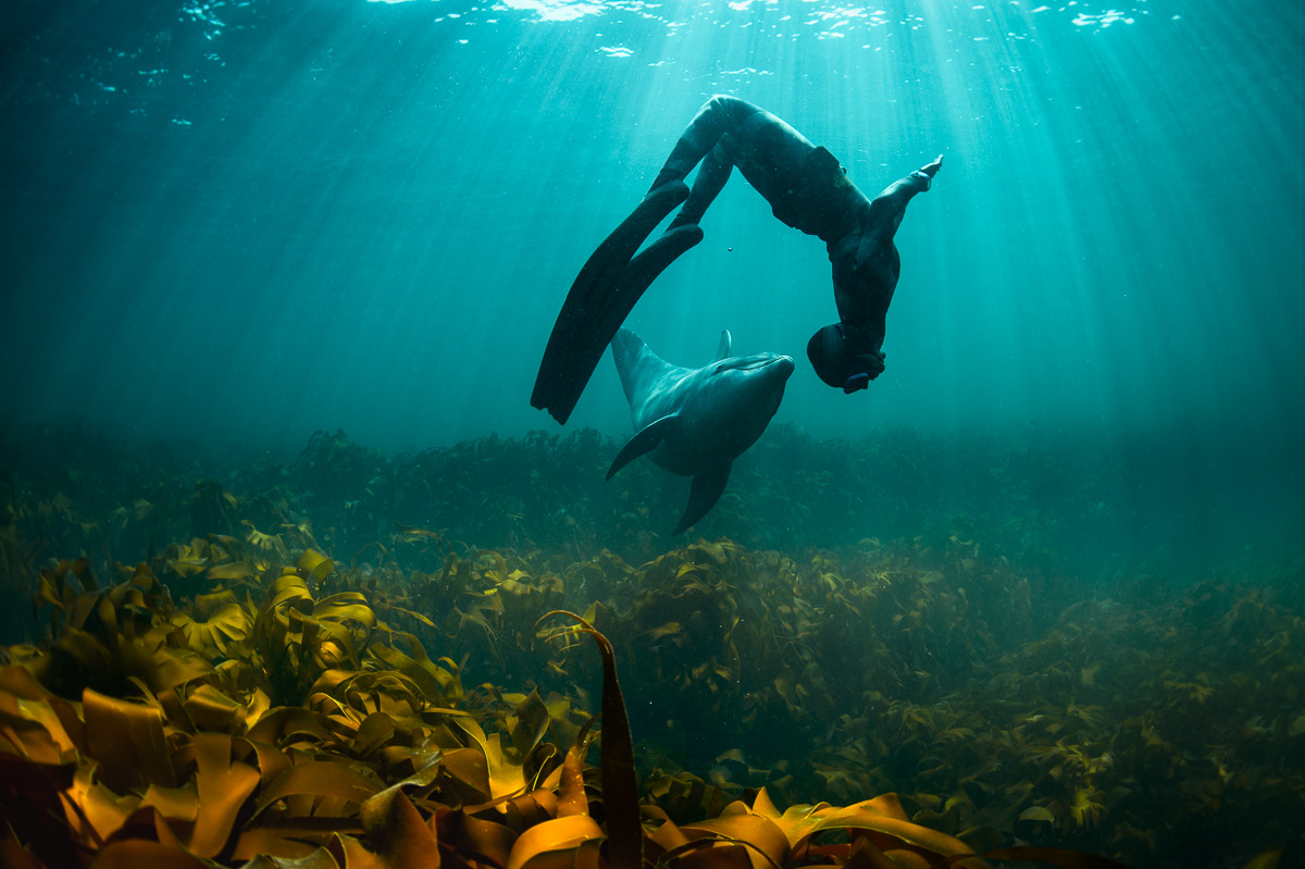 human girl dance underwater with dolphin ireland freedive