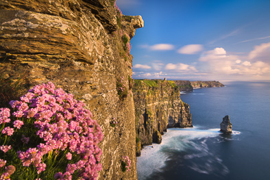 sea_pink_cliffs_of_moher