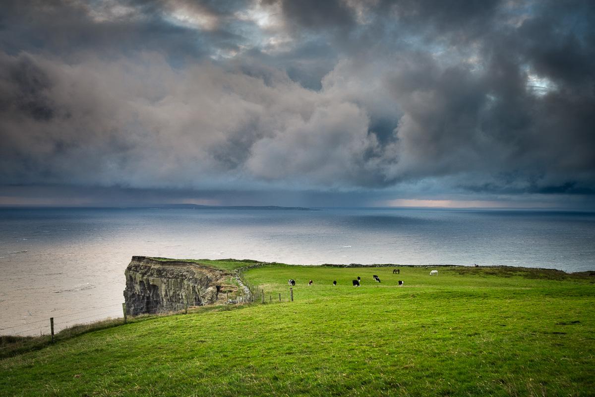 atlantic meadows